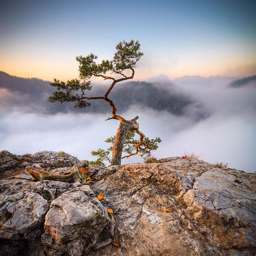 Горы Татры. Фотографии любителя_14