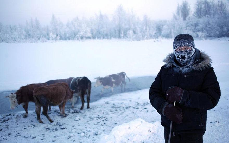 Фотопутешествие из Якутска в Оймякон. Самое холодное место на земле. Фото № 13