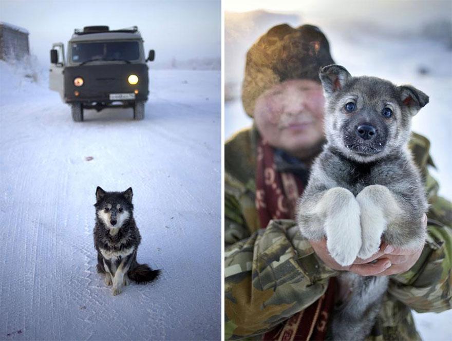 Фотопутешествие из Якутска в Оймякон. Самое холодное место на земле. Фото № 22