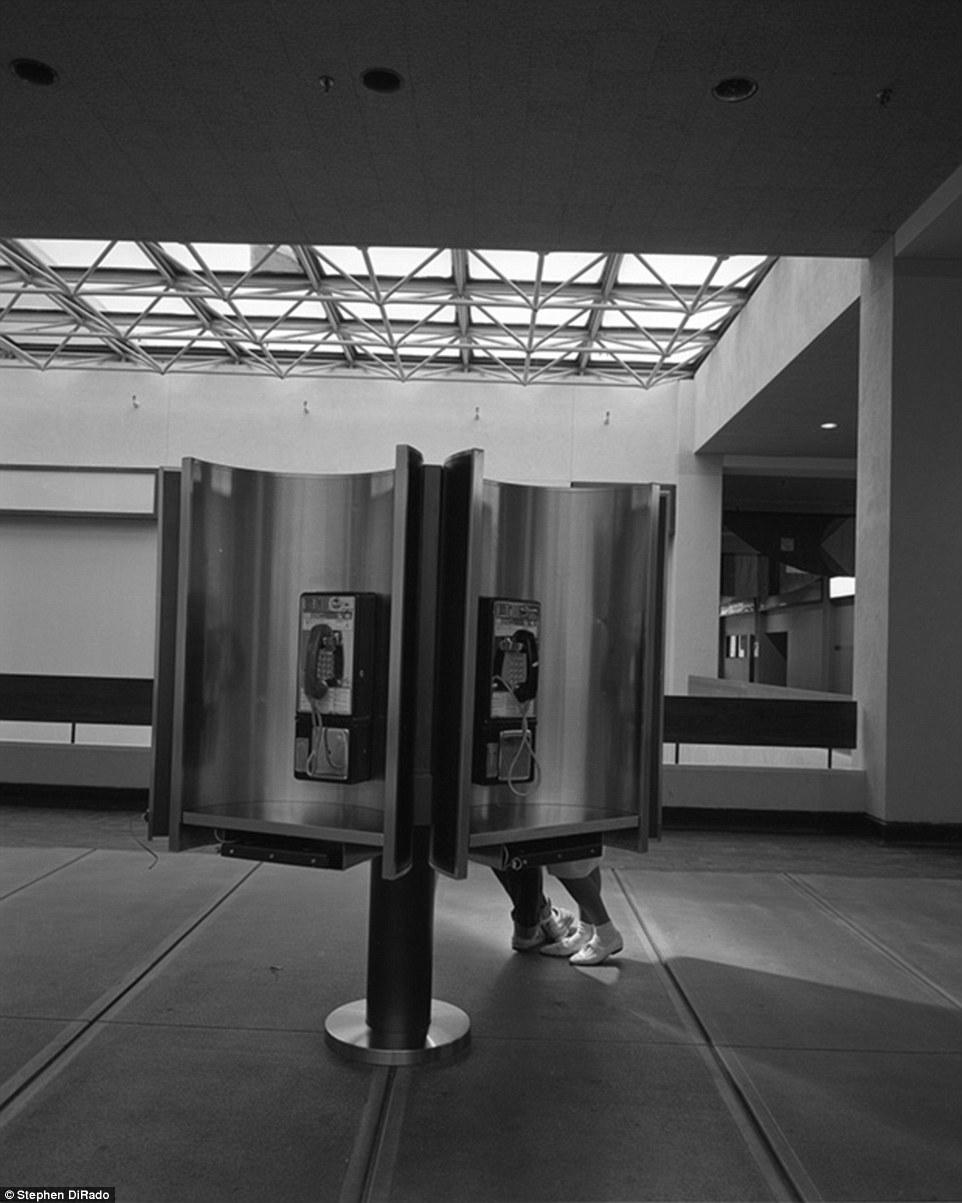 Истории торгового центра. Крысы торгового центра. Фото № 4