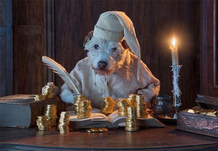 Каждое Рождество собака превращается в новое животное. Фото № 7