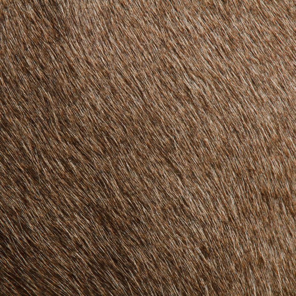 Кожа животных. Фото № 4
