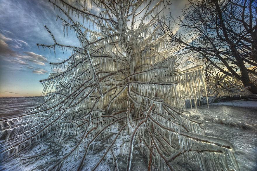 Природа Монреаля. Фото № 2