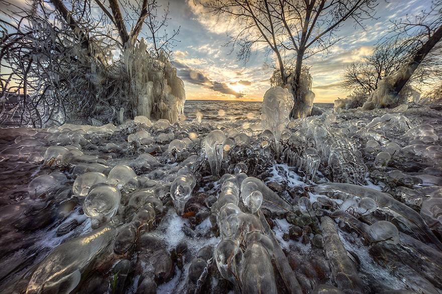 Природа Монреаля. Фото № 3