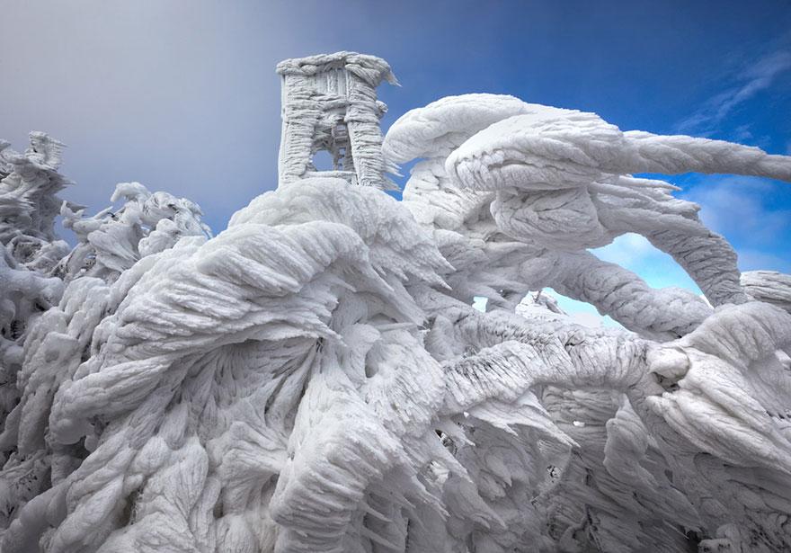 Царство льда. Обледеневшие деревья и природа. Фото № 1