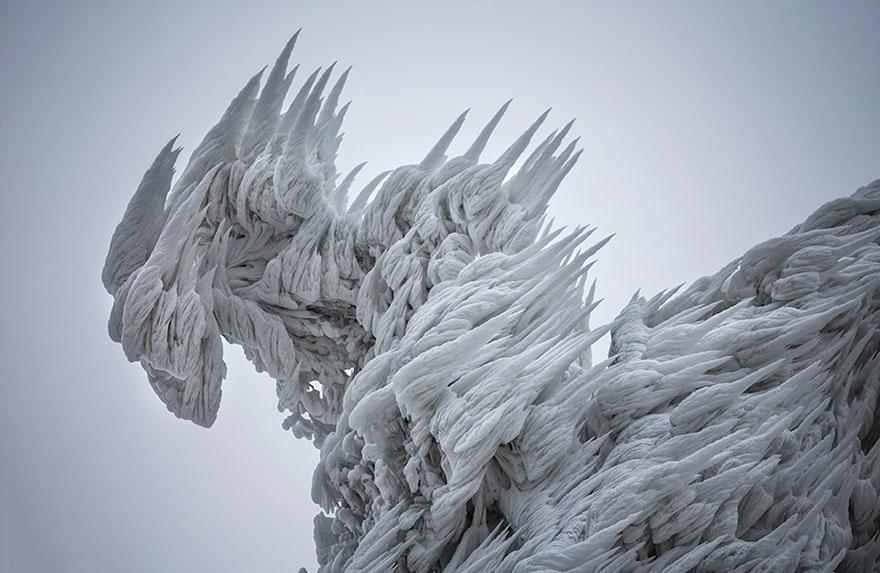 Царство льда. Обледеневшие деревья и природа. Фото № 2