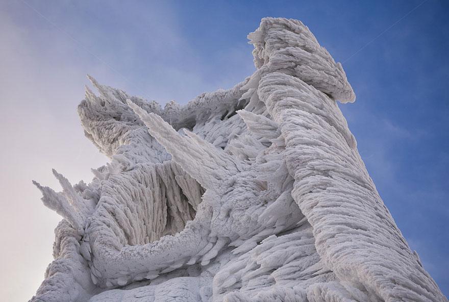 Царство льда. Обледеневшие деревья и природа. Фото № 7