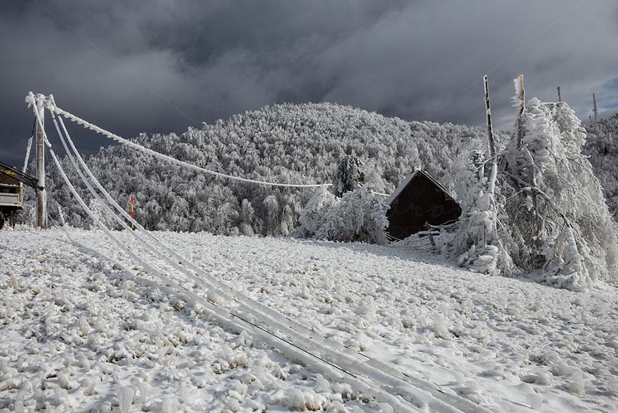 Царство льда. Обледеневшие деревья и природа. Фото № 8