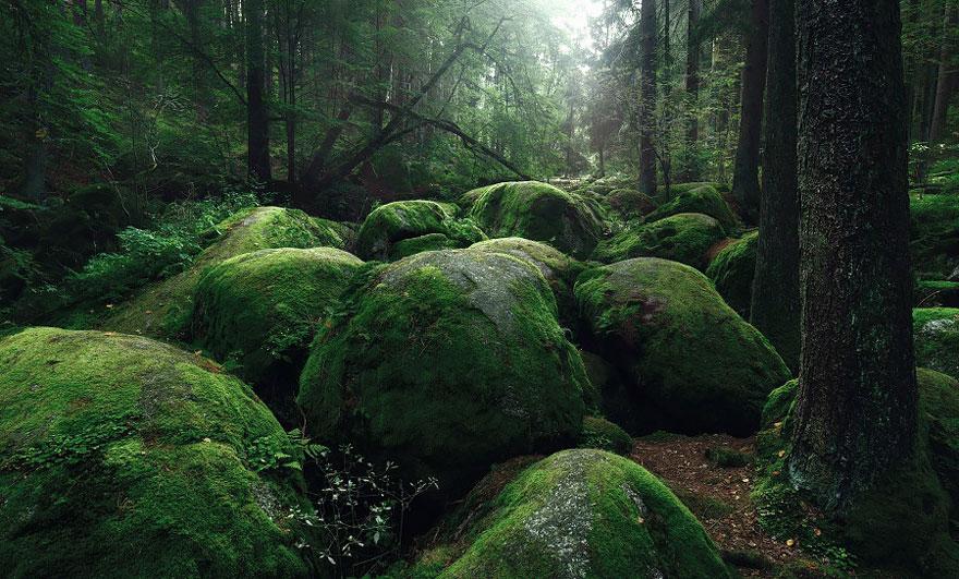 Пейзажи в стиле сказок братьев Гримм. Фото № 12