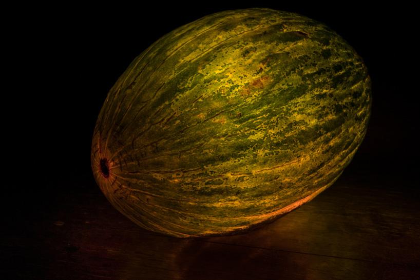 Фото фруктов и овощей. Фото № 11