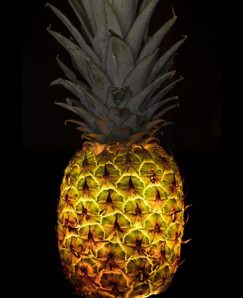 Фото фруктов и овощей. Фото № 3