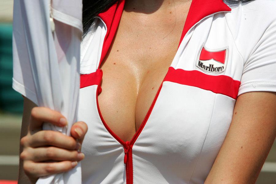 Полуобнаженные красавицы Формулы 1. Фото № 15