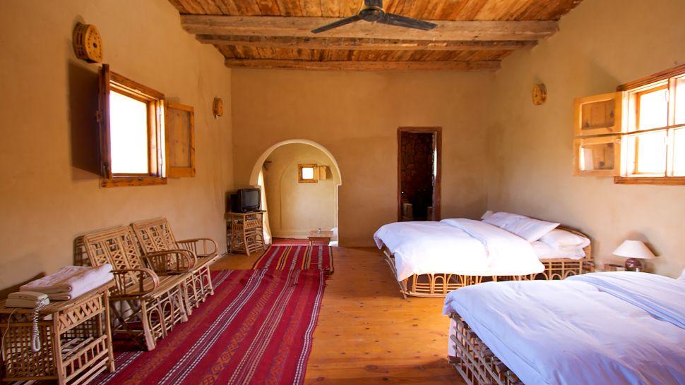 Туризм, отдых, оазис, пустыня. Фото № 3