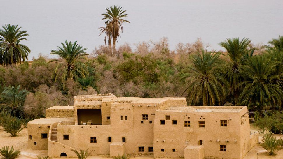 Туризм, отдых, оазис, пустыня. Фото № 4