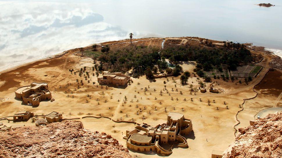 Туризм, отдых, оазис, пустыня. Фото № 9