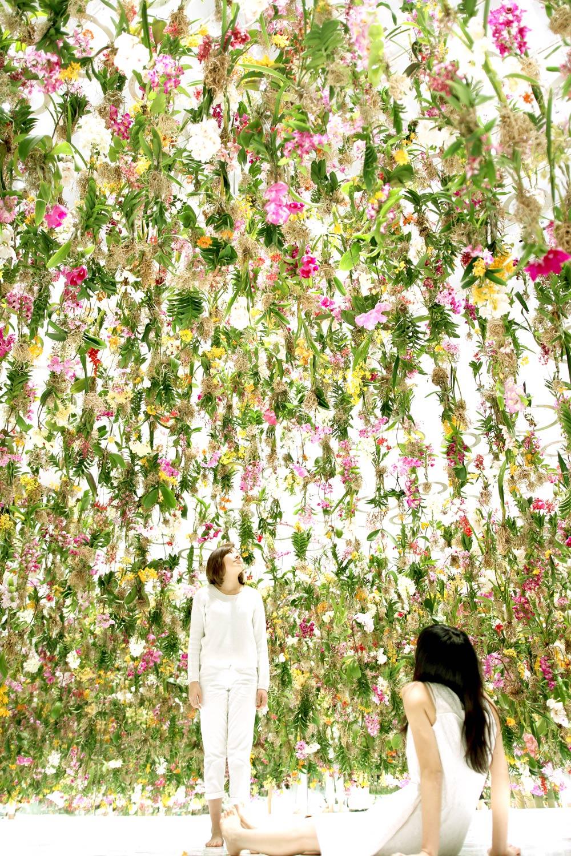 Цветы. Висячие сады. Фото № 7