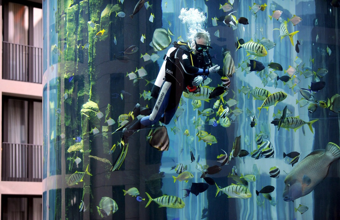 Гигантский аквариум в Берлине_04