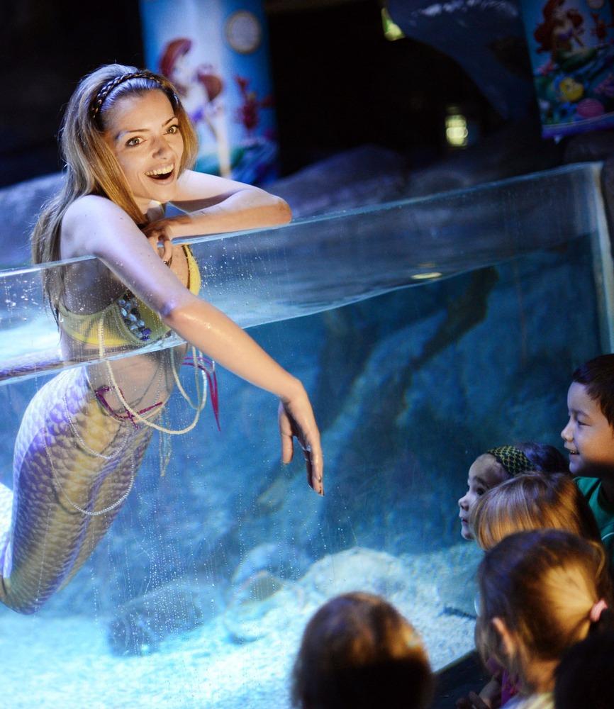 Гигантский аквариум в Берлине_07