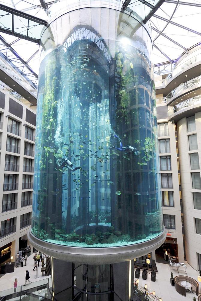 Гигантский аквариум в Берлине_11