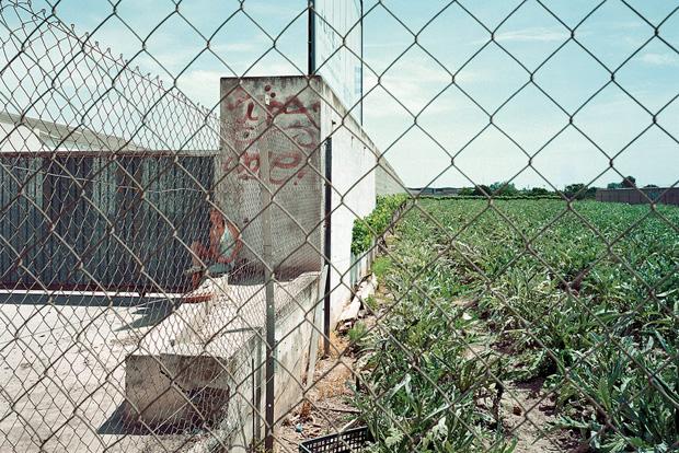 Проститутки ждут клиентов у дороги. Фото № 8