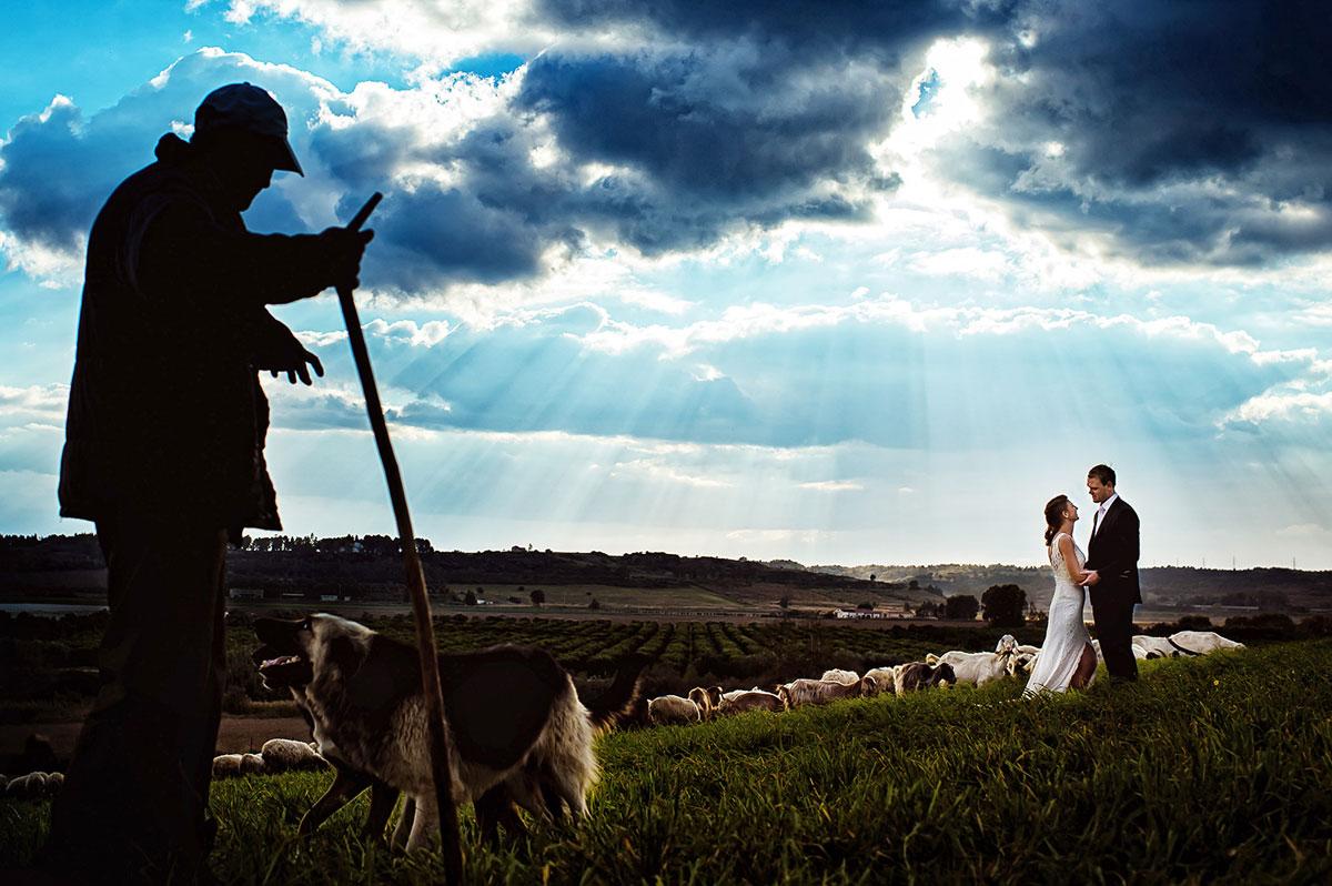 свадебные портреты и пейзажи005