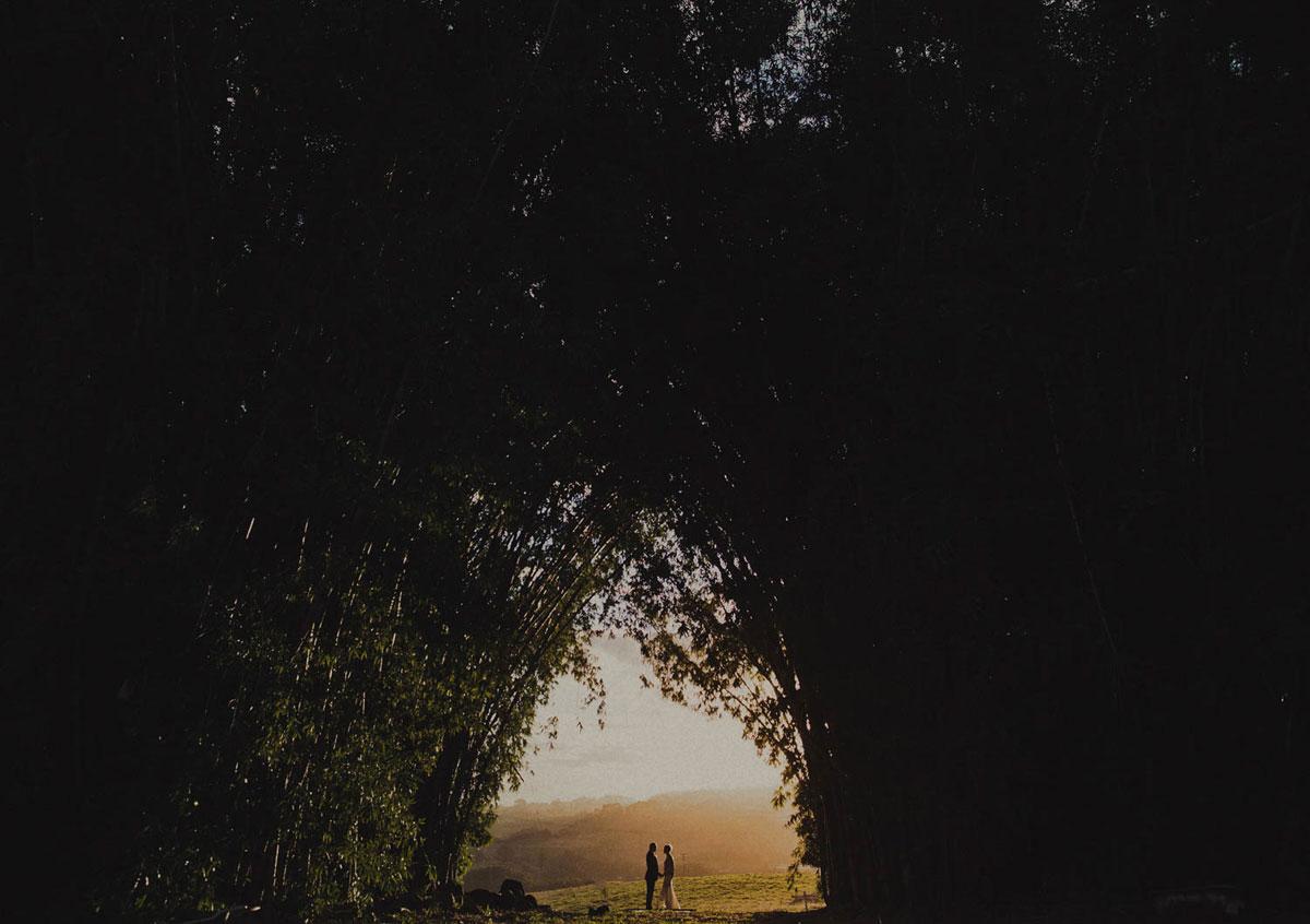 свадебные портреты и пейзажи006