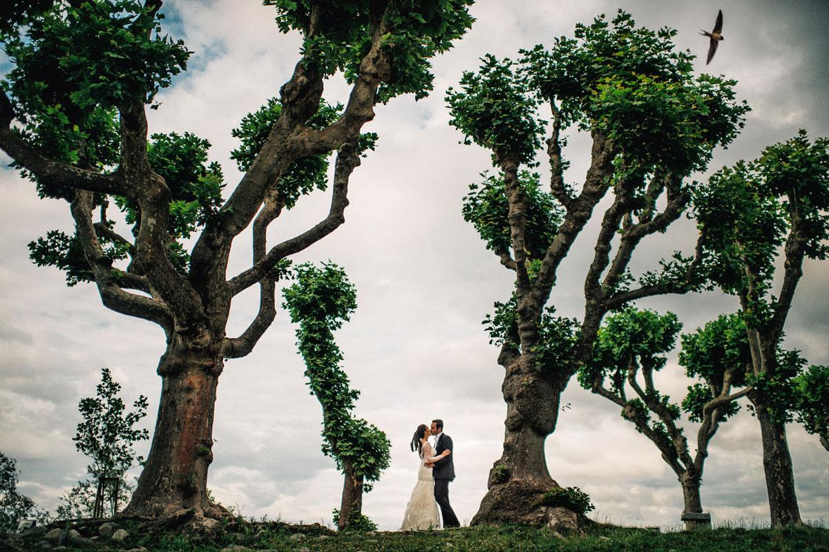 свадебные портреты и пейзажи013