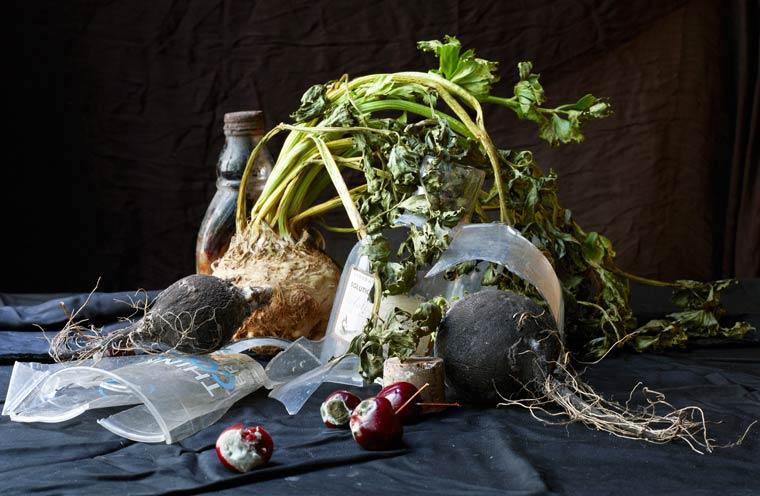 натюрморт, овощи, мусор_2