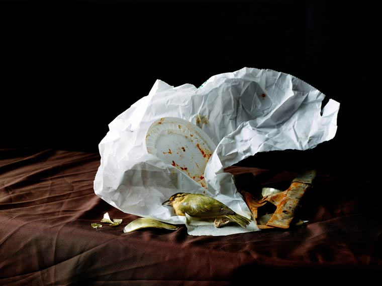 натюрморт, овощи, мусор_7