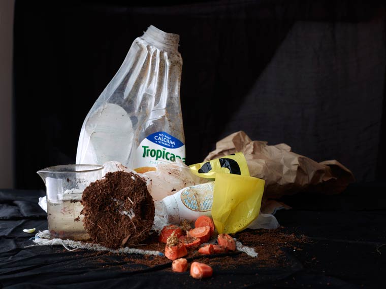 натюрморт, овощи, мусор_9