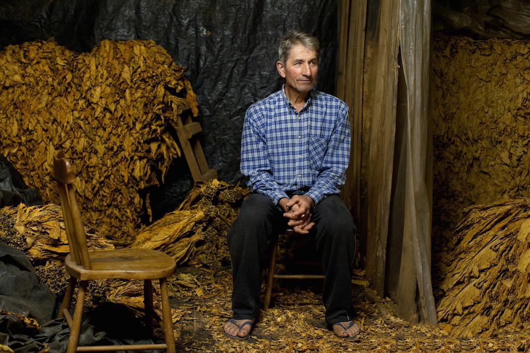 фермеры выращивающие табак, фото-2