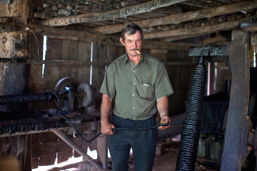 фермеры выращивающие табак, фото-6