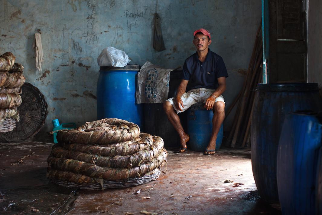 фермеры выращивающие табак, фото-8