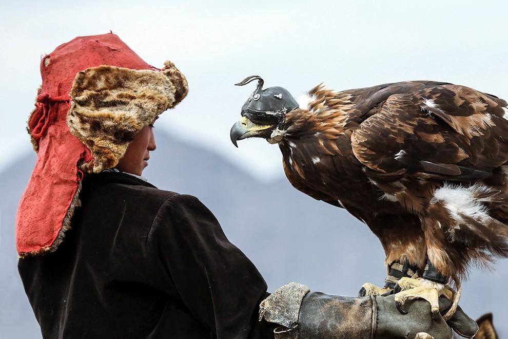 фестиваль Золотой Орел в Монголии-1