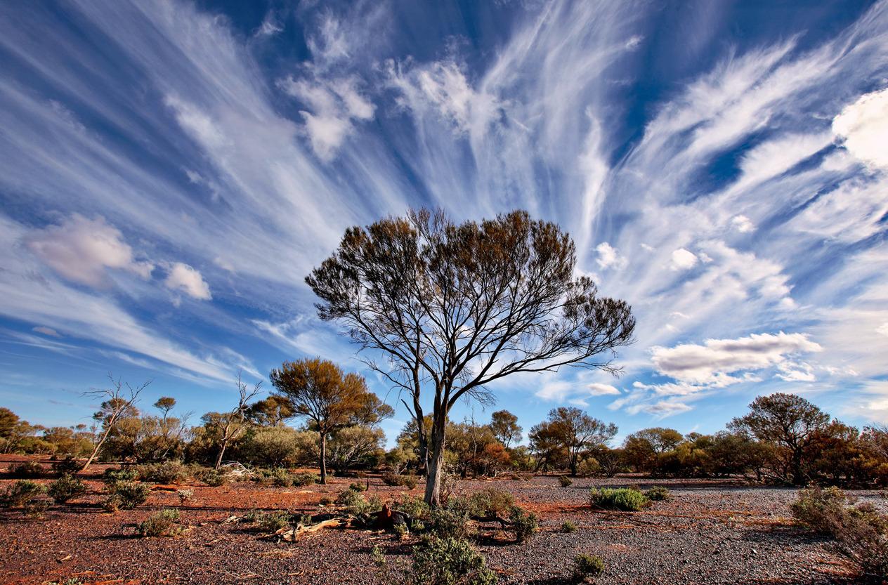 фотографии австралийской погоды, календарь 2015-6