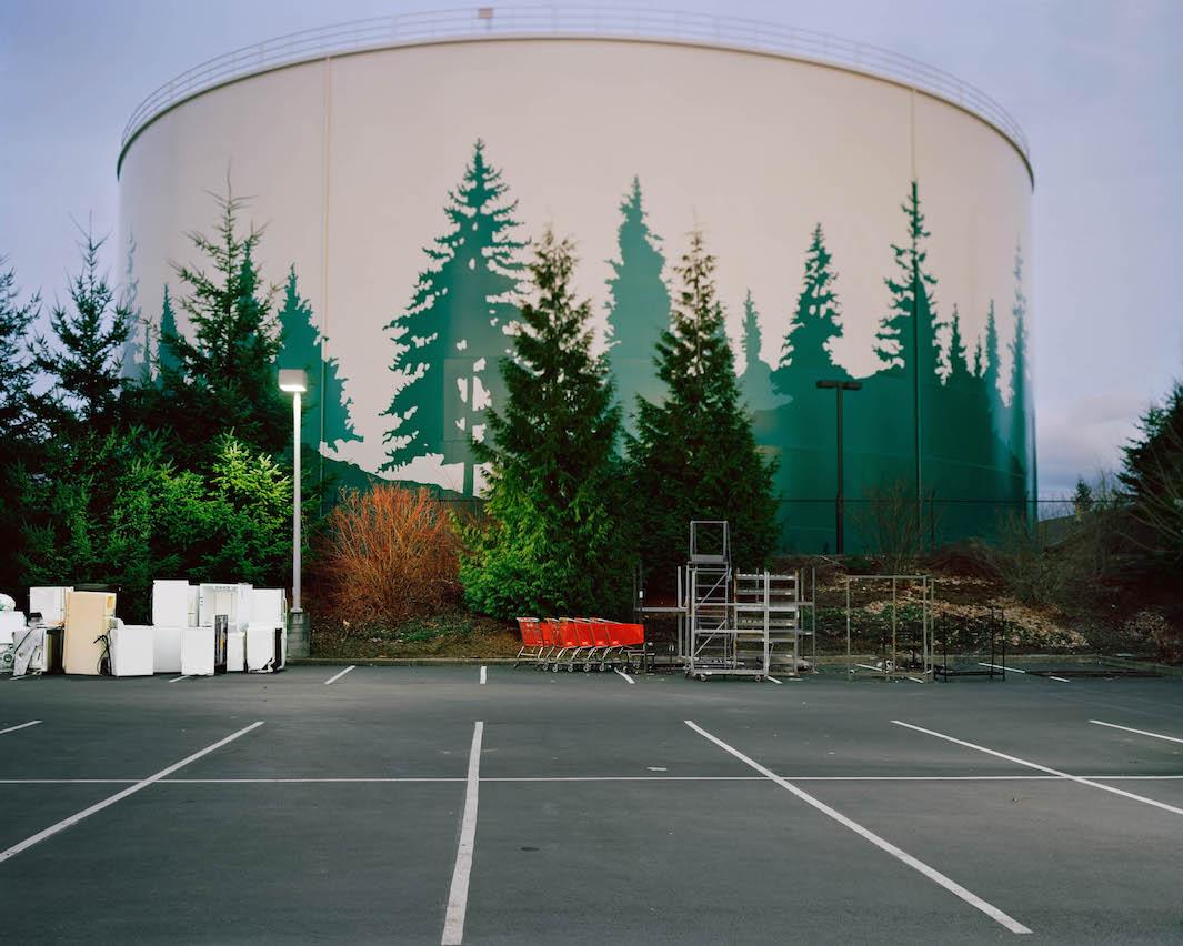 фотографии лесов США, Канады-4