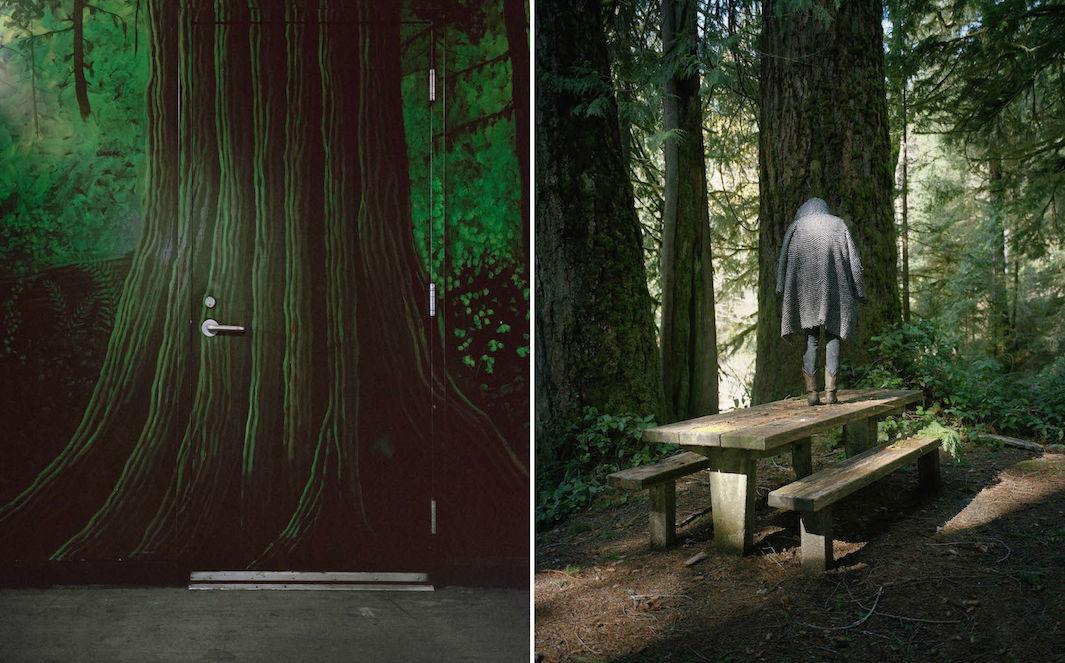 фотографии лесов США, Канады-5