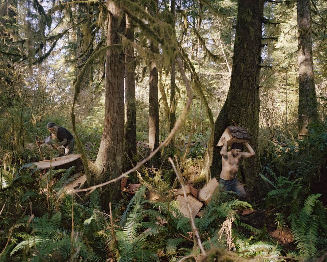 фотографии лесов США, Канады-6