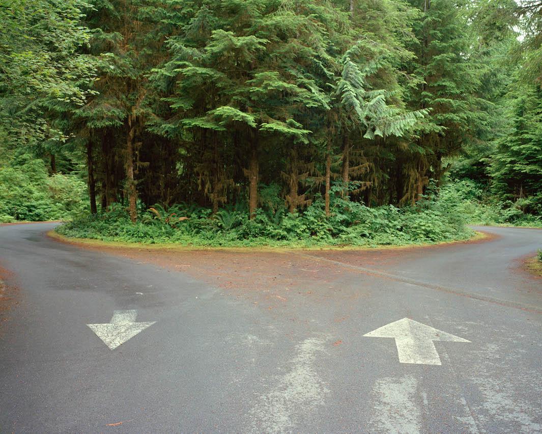 фотографии лесов США, Канады-9