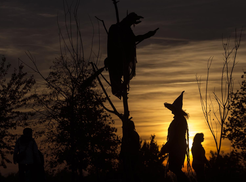 фотографии с Хэллоуина 2015-18