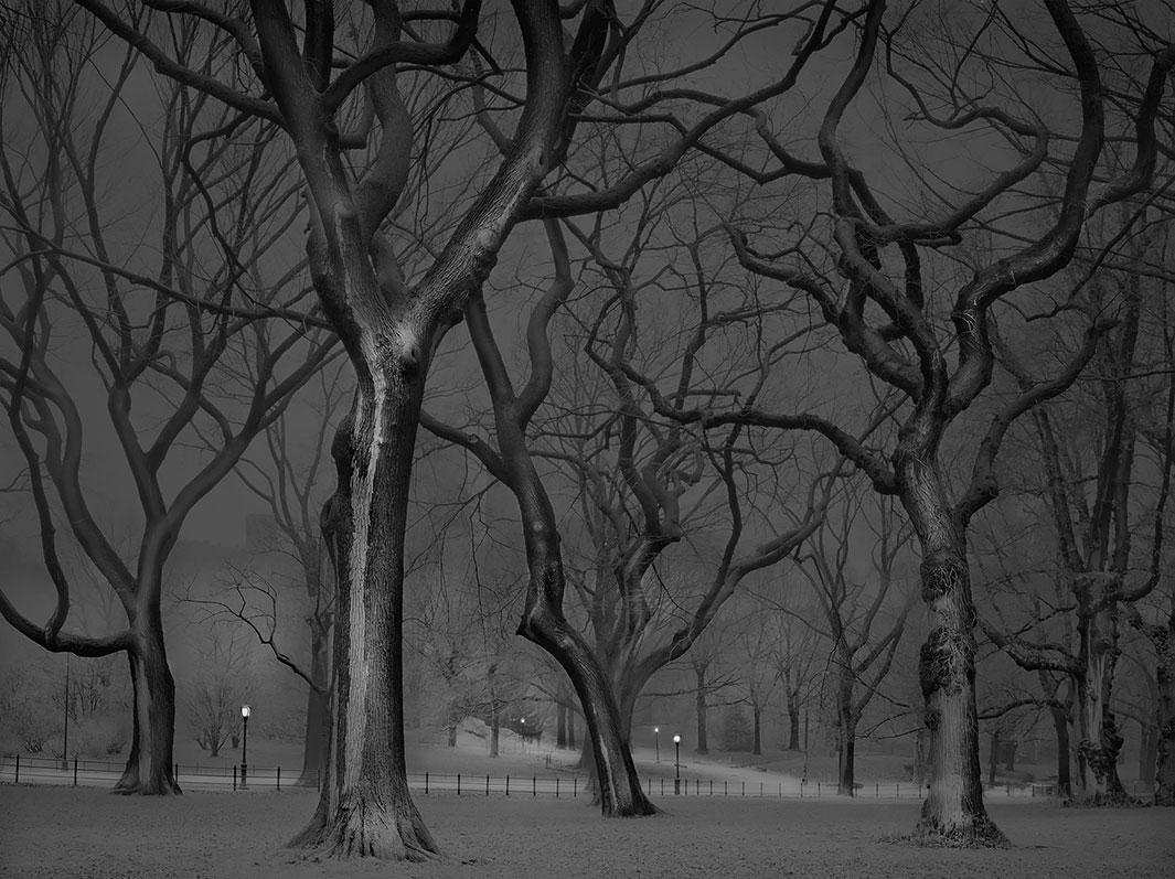 фотография, Центральный парк, Нью-Йорк-2
