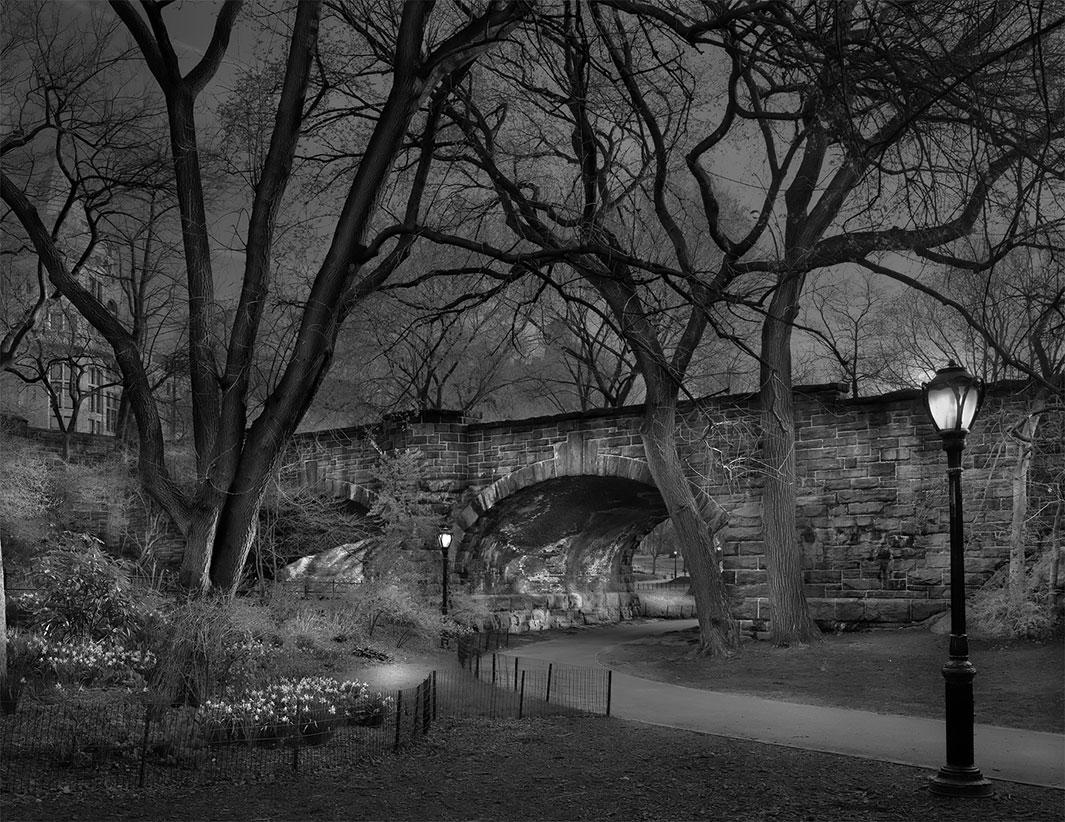 фотография, Центральный парк, Нью-Йорк-7