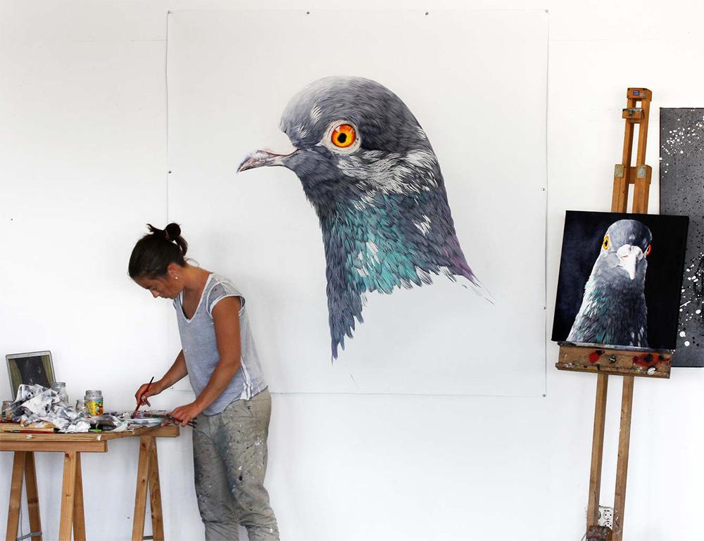 картины голубей, фото, рисунки-1