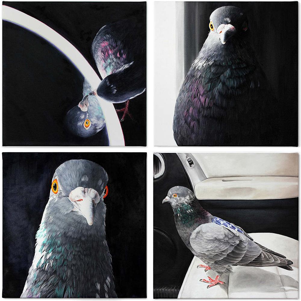 картины голубей, фото, рисунки-4