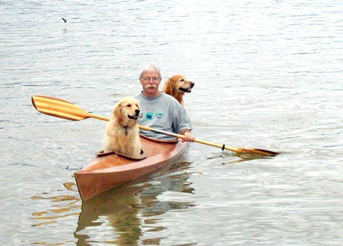 путешествие на байдарке с собаками-1