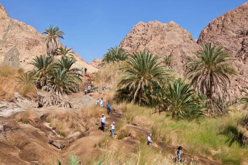 синайский полуостров, отдых в Египте-7
