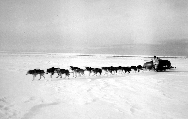 антарктика, внедорожник, адмирал Берд, экспедиция-15