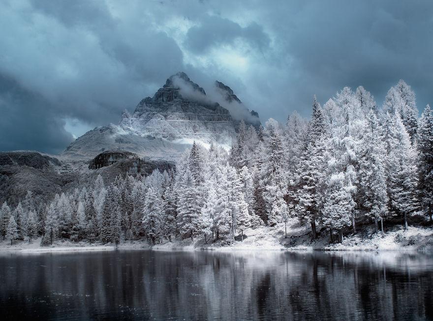 деревья в снегу, фото, природа, Польша-5