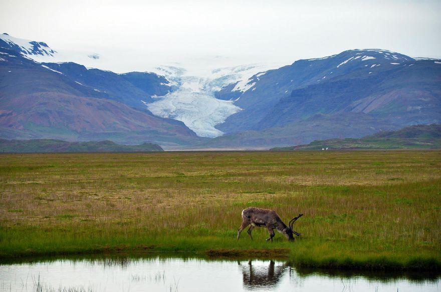 Исландия фото, Исландия на карте, остров Исландия, столица Исландии, погода Исландии, фото № 3