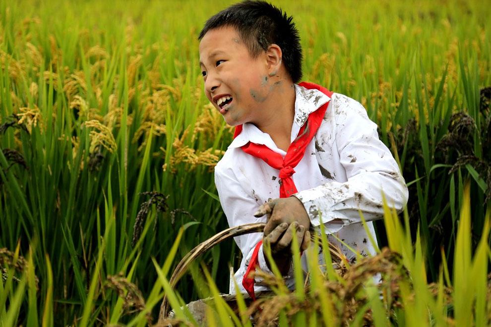 детская фотография, National Geographic, конкурс-10